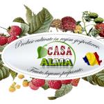 Logo Casa Alma
