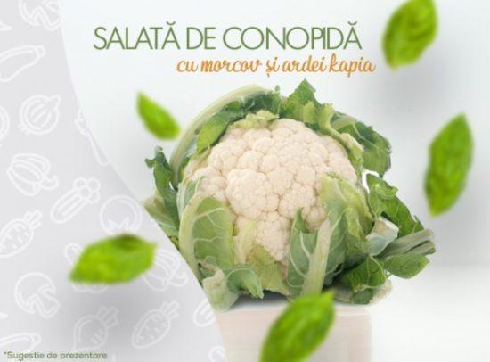 OgradacuLegume SalataConopidacuMorcovsiArdeiKapia