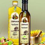 Zorian Logo