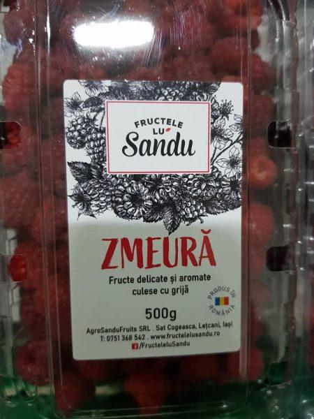 zmeura fructe