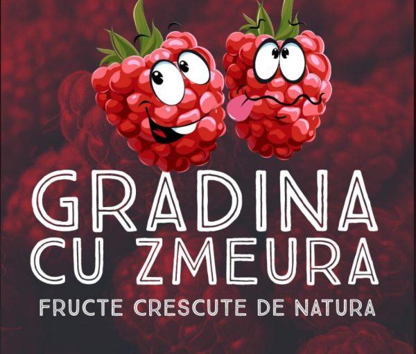 GradinaDeZmeura1 1