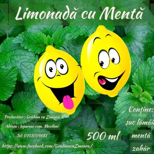 GradinaDeZmeura LimonadaMenta